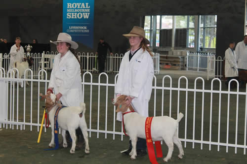 Mt Lilydale College Young Farmers at the Royal Melbourne Show