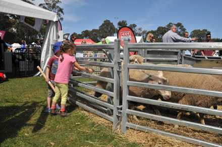 Wandin Silvan Field Days has something for everyone